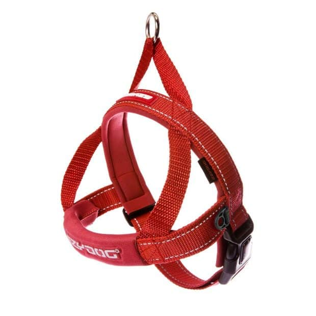 EzyDog Quick Fit Custom Fit Adjustable Dog Harness for Golden Retrievers
