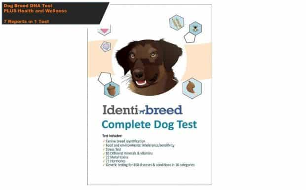 IdentiBreed Dog Breed Test