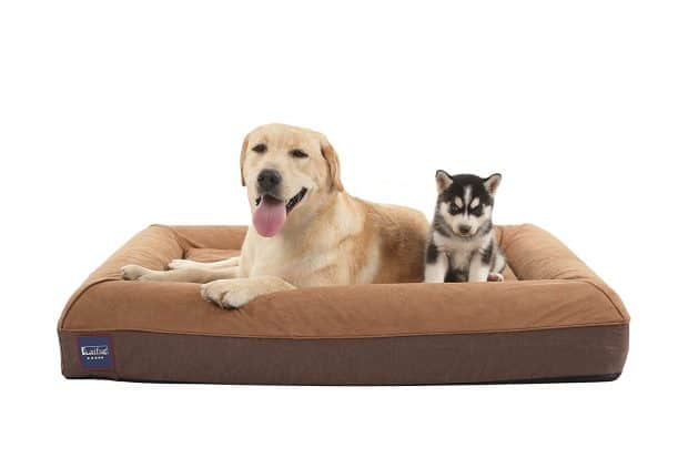 Laifug Orthopedic Memory Foam Large Dog Bed