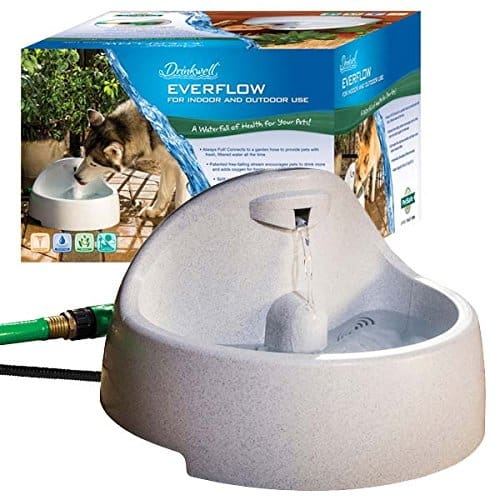 PetSafe Drinkwell Everflow Indoor/Outdoor Water Fountain
