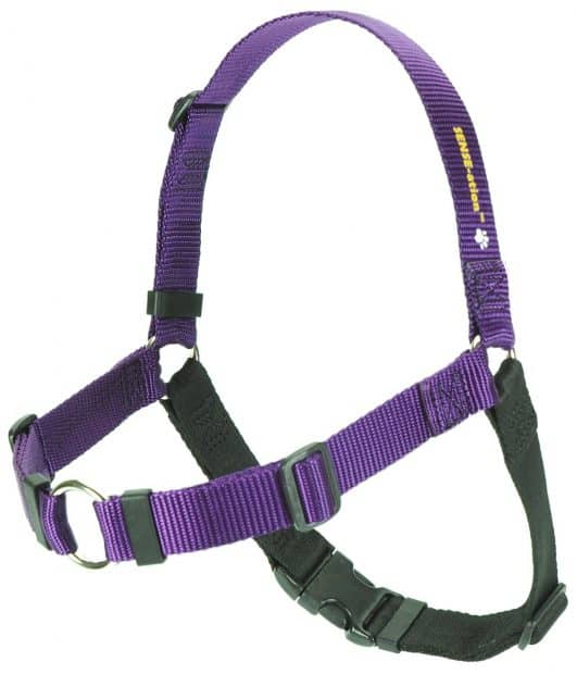 The Original SENSE-ation No-Pull Dog Training Harness