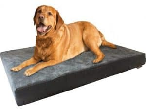 Dogbed4less Extra Large Orthopedic Premium Memory Foam Dog Bed Golden Retrievers
