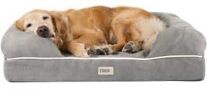 Friends Forever Premium Orthopedic Dog Bed Golden Retriever