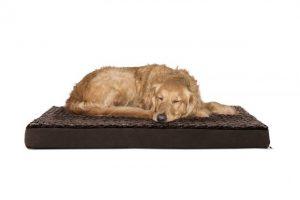 FurHaven Deluxe Orthopedic Dog Bed Golden Retriever