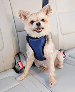 PetSafe Deluxe Car Safety Dog Harness